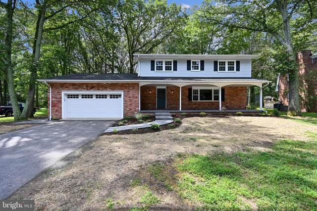 239 Arundel Beach Road, SEVERNA PARK, MD 21146 (#MDAA441100) :: The Matt Lenza Real Estate Team