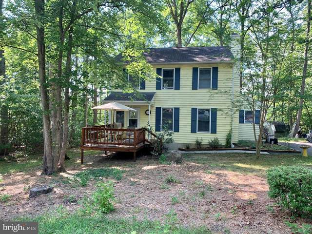 228 Daniels Road, RUCKERSVILLE, VA 22968 (#VAGR103018) :: AJ Team Realty