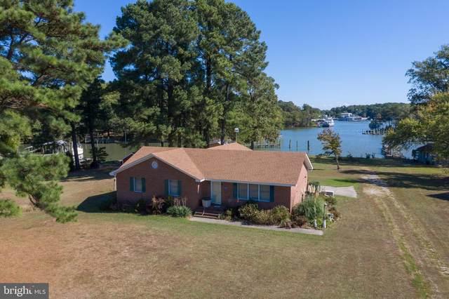 205 Crabhouse Drive, REEDVILLE, VA 22539 (#VANV101476) :: The Licata Group/Keller Williams Realty