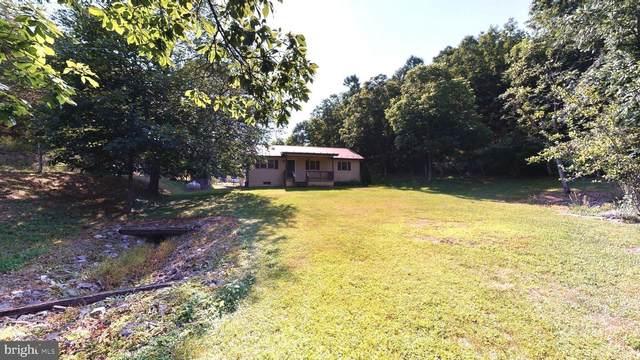 2396 Patterson Creek Road, PETERSBURG, WV 26847 (#WVGT103286) :: LoCoMusings
