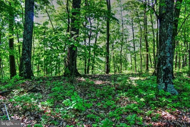 Supinlick Ridge Road, MOUNT JACKSON, VA 22842 (#VASH119820) :: Blackwell Real Estate