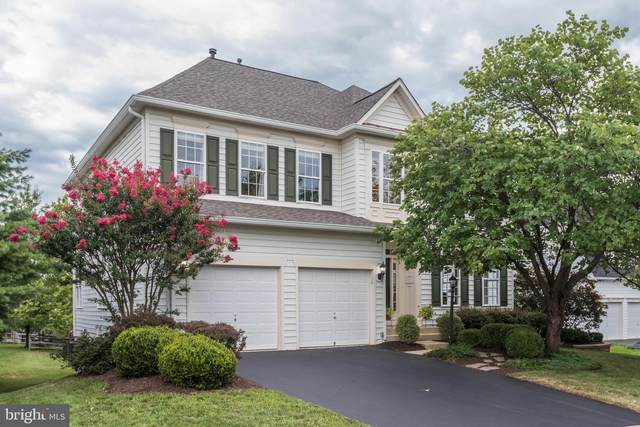 43016 Battery Point Place, LEESBURG, VA 20176 (#VALO417140) :: Debbie Dogrul Associates - Long and Foster Real Estate