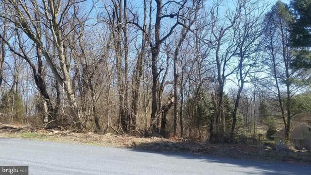 38 Martin Lane, STRASBURG, PA 17579 (#PALA167262) :: REMAX Horizons