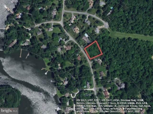 32072 Shorewood Road, GALENA, MD 21635 (#MDKE116854) :: LoCoMusings