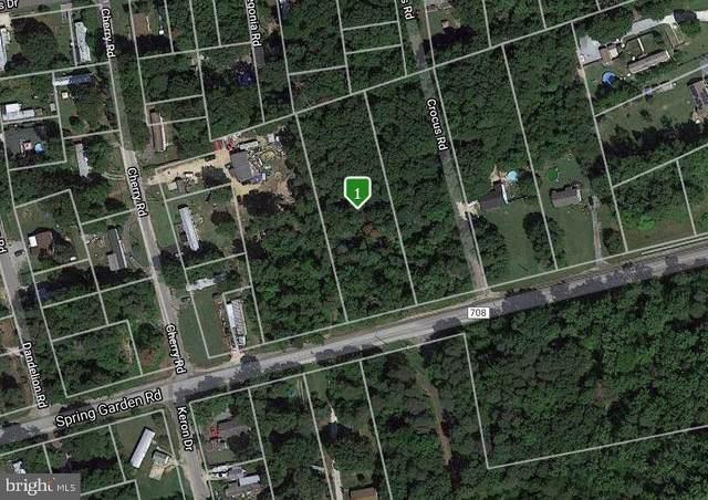 2010 Spring Garden Road, MILLVILLE, NJ 08332 (#NJCB127952) :: Daunno Realty Services, LLC