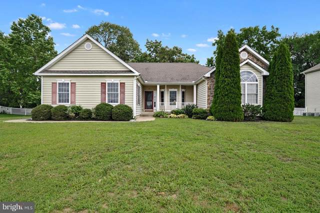 169 Sedgewick Drive, MAGNOLIA, DE 19962 (#DEKT240586) :: Atlantic Shores Sotheby's International Realty