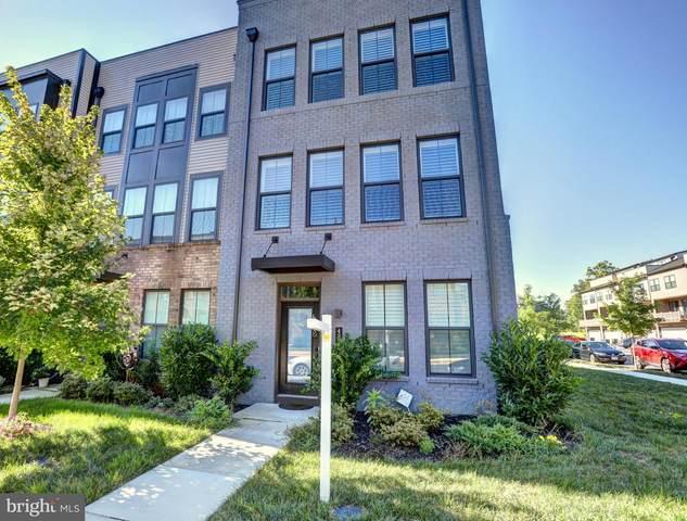 43301 John Michael Terrace, ASHBURN, VA 20148 (#VALO417410) :: Debbie Dogrul Associates - Long and Foster Real Estate