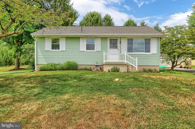 1428 Mastersonville Road, MANHEIM, PA 17545 (#PALA167466) :: Liz Hamberger Real Estate Team of KW Keystone Realty