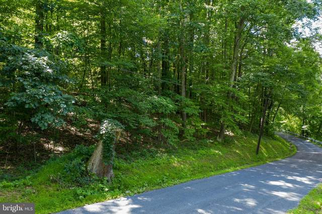 Old Hancock Road, CUMBERLAND, MD 21502 (#MDAL134822) :: ExecuHome Realty