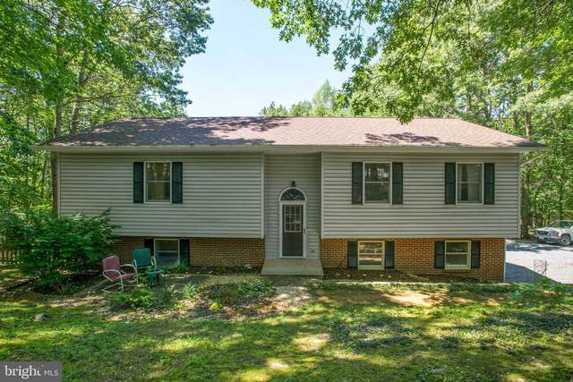 200 Ben Davis Drive, LINDEN, VA 22642 (#VAWR140964) :: Debbie Dogrul Associates - Long and Foster Real Estate