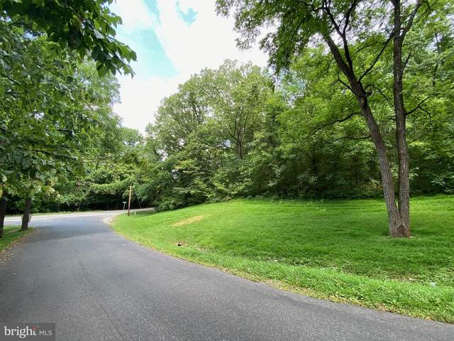 Lot 1A Grandview Drive, FRONT ROYAL, VA 22630 (#VAWR140966) :: AJ Team Realty