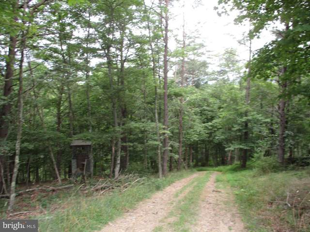 Off Theodore Hawvermale, BERKELEY SPRINGS, WV 25411 (#WVMO117184) :: EXP Realty