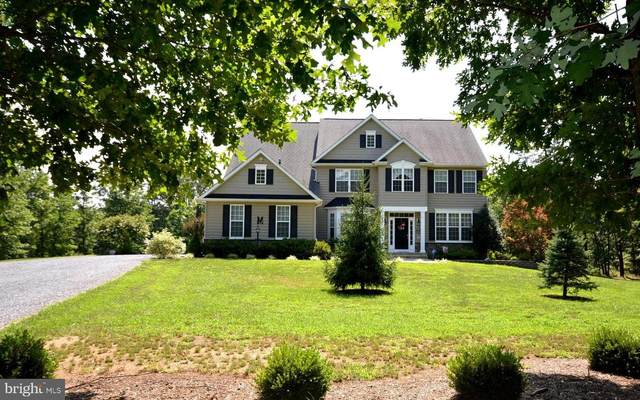 201 Hammack Lane, WINCHESTER, VA 22602 (#VAFV158890) :: Premier Property Group