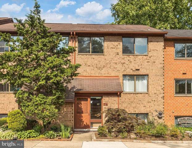 7167 Winter Rose Path, COLUMBIA, MD 21045 (#MDHW283160) :: RE/MAX Advantage Realty