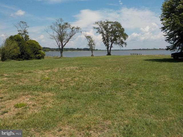 0 Deal Island Road, DEAL ISLAND, MD 21821 (#MDSO103804) :: McClain-Williamson Realty, LLC.