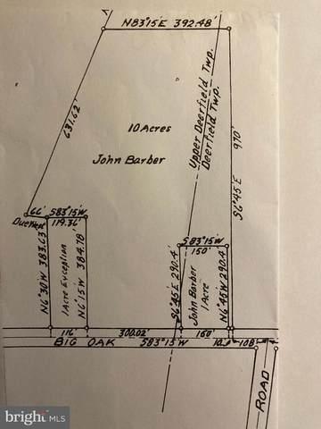 201 Big Oak, BRIDGETON, NJ 08302 (MLS #NJCB128036) :: The Dekanski Home Selling Team