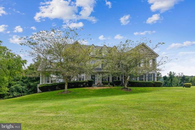 40393 Browns Creek Place, LEESBURG, VA 20175 (#VALO417772) :: RE/MAX 1st Realty