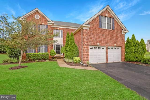 22652 Philomont Ridge Court, ASHBURN, VA 20148 (#VALO417882) :: LoCoMusings