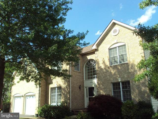 19996 Hazeltine Place, ASHBURN, VA 20147 (#VALO417896) :: AJ Team Realty
