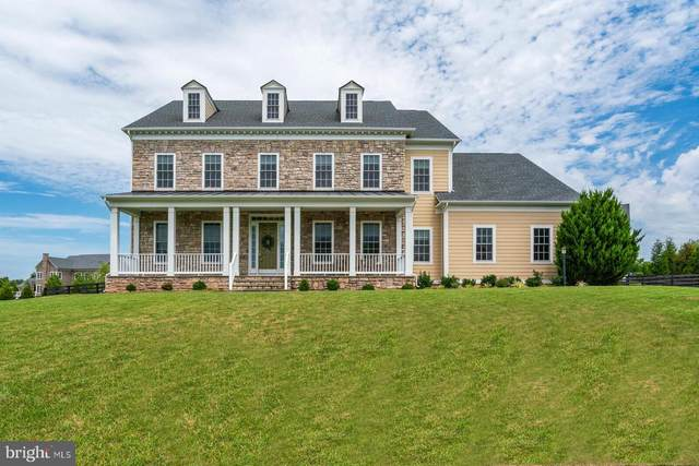 41932 Clover Valley Court, ASHBURN, VA 20148 (#VALO417918) :: The Piano Home Group