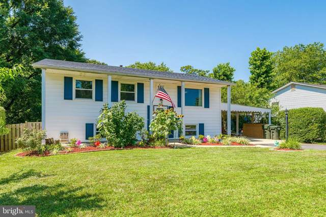501 W Poplar Road, STERLING, VA 20164 (#VALO417924) :: Arlington Realty, Inc.