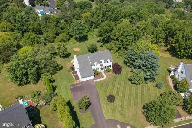 313 Missimer Drive, ROYERSFORD, PA 19468 (#PAMC658816) :: Premier Property Group
