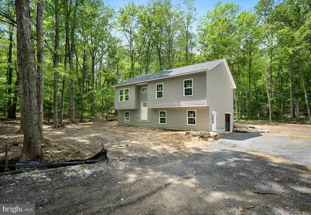 723 Raccoon Drive, WINCHESTER, VA 22602 (#VAFV158976) :: Dart Homes