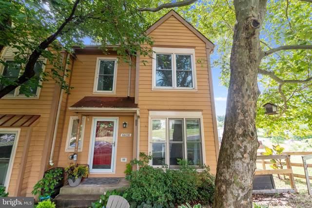 6608 E Beach Drive, NEW MARKET, MD 21774 (#MDFR268468) :: Revol Real Estate