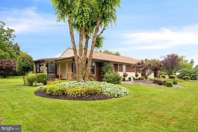 2415 Magnolia Drive, WILMINGTON, DE 19810 (#DENC506478) :: Revol Real Estate