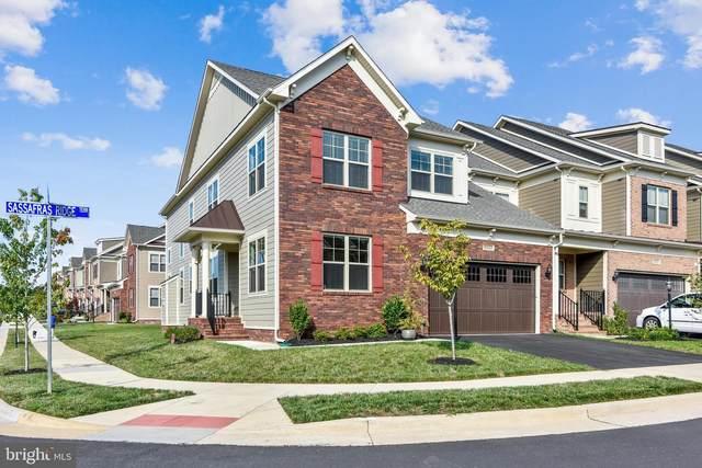 19433 Sassafras Ridge Terrace, LEESBURG, VA 20176 (#VALO418068) :: Debbie Dogrul Associates - Long and Foster Real Estate