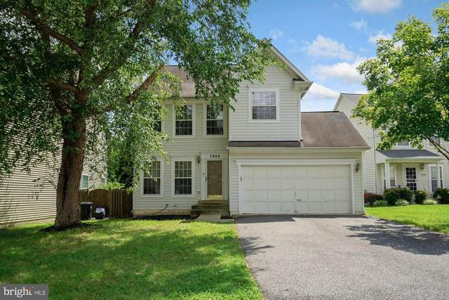 7909 Whitewater Court, CLINTON, MD 20735 (#MDPG576582) :: Pearson Smith Realty