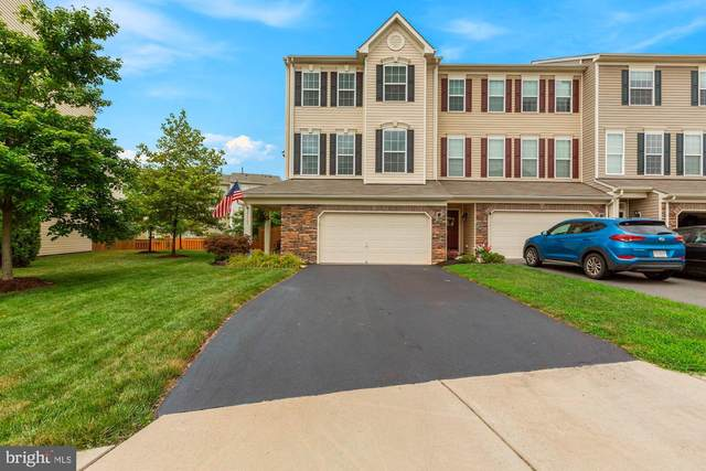 25163 Hummocky Terrace, ALDIE, VA 20105 (#VALO418094) :: The Sky Group
