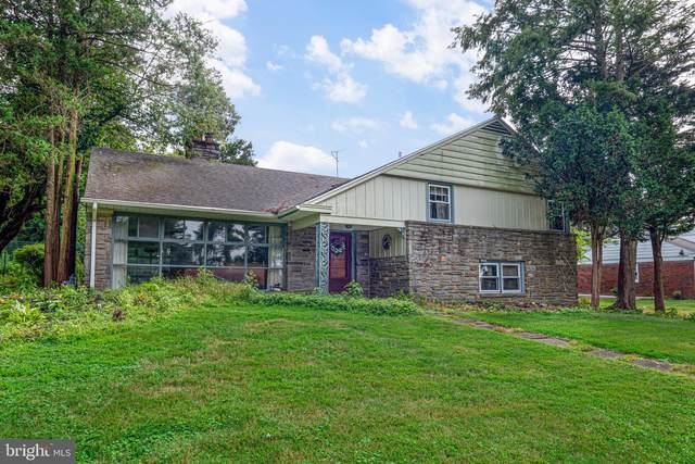 417 Collins Drive, SPRINGFIELD, PA 19064 (#PADE524258) :: REMAX Horizons