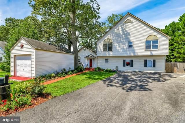 7728 Glen Avenue, PASADENA, MD 21122 (#MDAA442434) :: Revol Real Estate