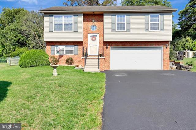 17008 Reading Drive, WILLIAMSPORT, MD 21795 (#MDWA173846) :: Eng Garcia Properties, LLC