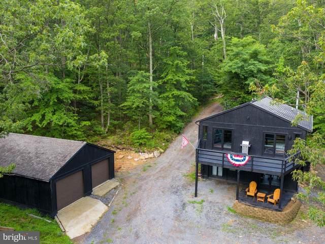 1148 Tomahawk Trail, WINCHESTER, VA 22602 (#VAFV159008) :: Dart Homes