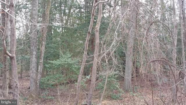 Delphinium Trail, LORTON, VA 22079 (#VAFX1146284) :: Bruce & Tanya and Associates
