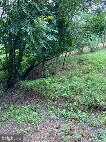 N Laurel Avenue Lot 46, BERKELEY SPRINGS, WV 25411 (#WVMO117208) :: RE/MAX 1st Realty