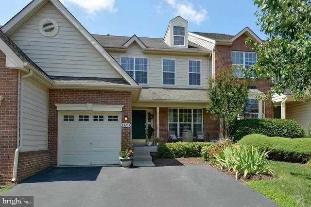 43233 Somerset Hills Terrace, ASHBURN, VA 20147 (#VALO418152) :: The Bob & Ronna Group
