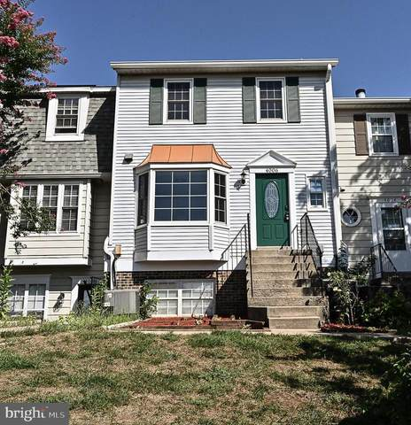 4006 Summer Hollow Court 154E, CHANTILLY, VA 20151 (#VAFX1146370) :: Jennifer Mack Properties