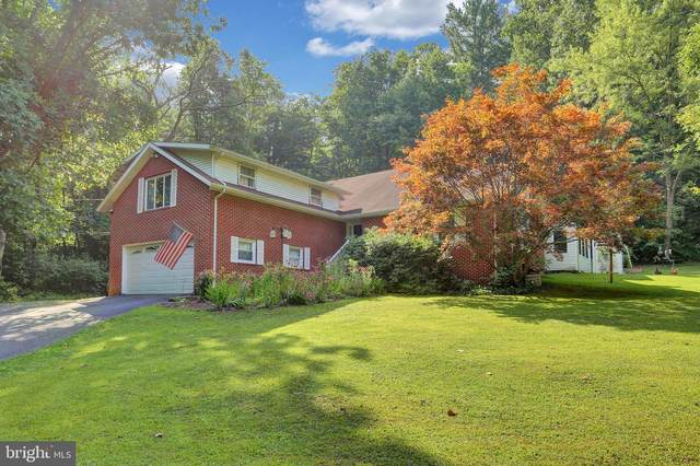 3231 Little Buffalo Road, NEWPORT, PA 17074 (#PAPY102476) :: TeamPete Realty Services, Inc
