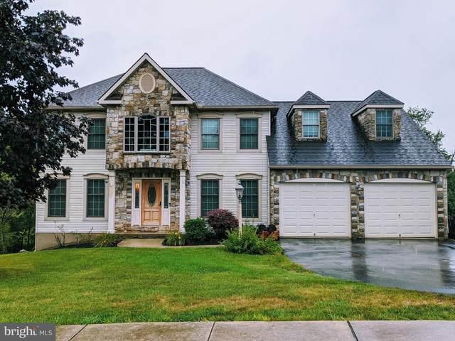 15 Bullrush Landing, ELIZABETHTOWN, PA 17022 (#PALA167882) :: The Joy Daniels Real Estate Group