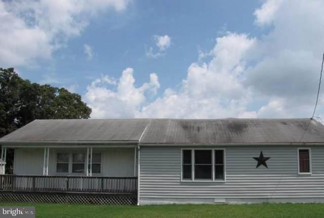 28079 Possum Point Road, MILLSBORO, DE 19966 (#DESU166218) :: Linda Dale Real Estate Experts