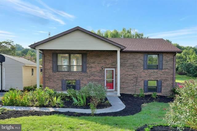 364 Virginia Street, STRASBURG, VA 22657 (#VASH119904) :: John Lesniewski   RE/MAX United Real Estate