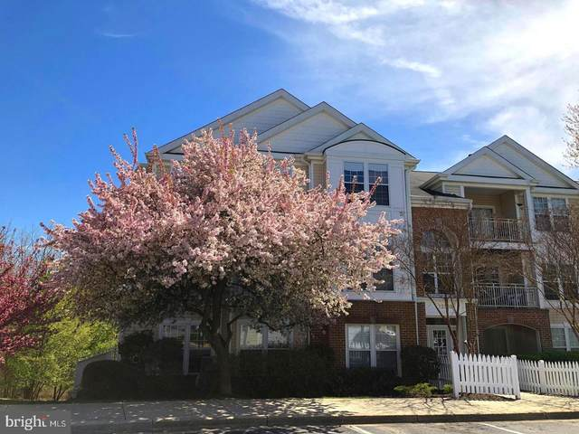 12008 Amber Ridge Circle A-203, GERMANTOWN, MD 20876 (#MDMC719850) :: Tessier Real Estate