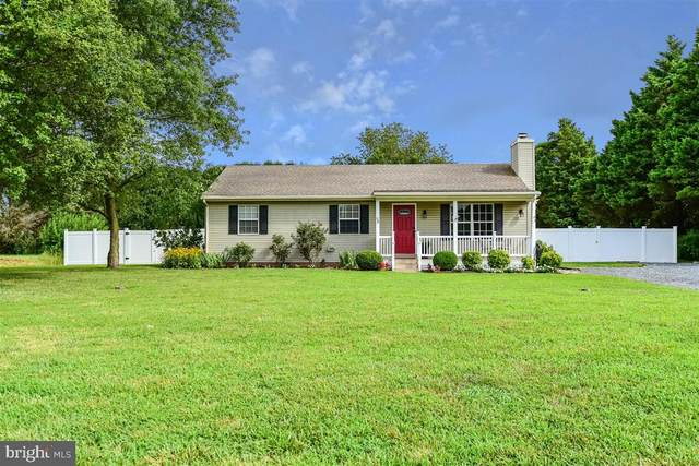 26902 Black Horse Pk Run, SALISBURY, MD 21801 (#MDWC109232) :: Lucido Agency of Keller Williams