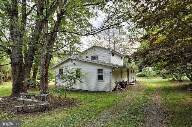 2226 Lake Drive, NEWMANSTOWN, PA 17073 (#PALA167982) :: The Craig Hartranft Team, Berkshire Hathaway Homesale Realty