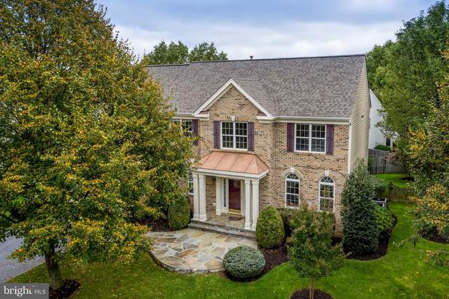 301 Pathway Place SW, LEESBURG, VA 20175 (#VALO418290) :: EXP Realty