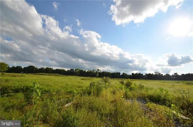 2596 Redington Road, HELLERTOWN, PA 18055 (#PANH106786) :: Lucido Agency of Keller Williams