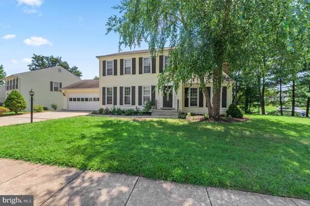171 Heather Glen Road, STERLING, VA 20165 (#VALO418316) :: Great Falls Great Homes